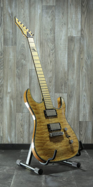 B.C.Rich ZOLTAN BATHORY Signature Assassin
